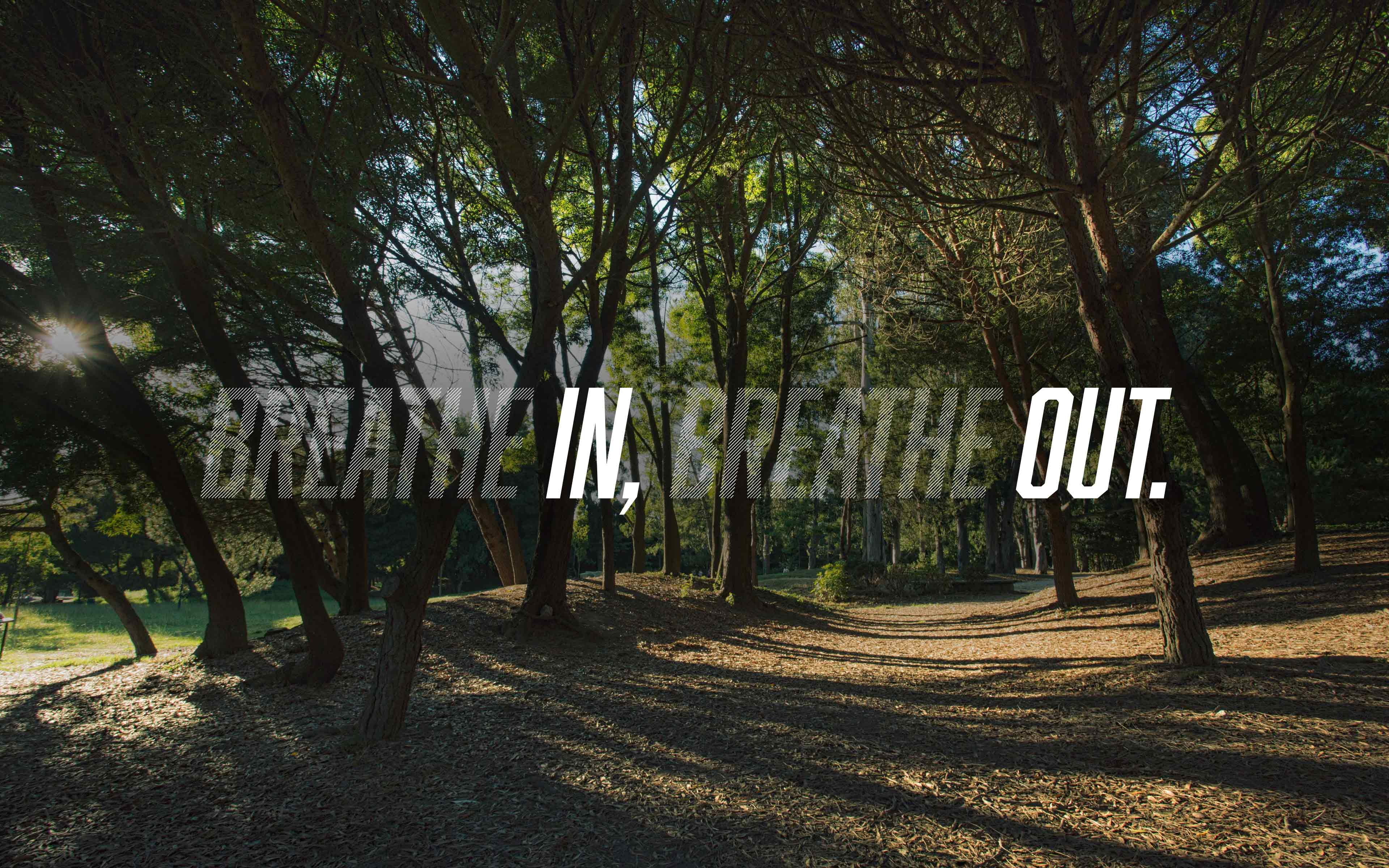 Breathin Breatheout